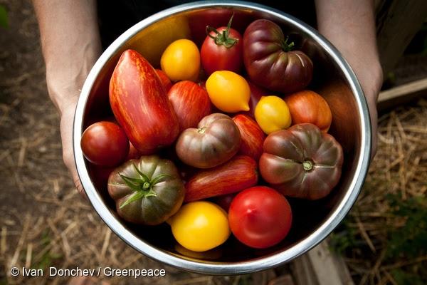 """Пресконференция """"От фермери за фермери – онлайн платформа за екологично земеделие"""""""