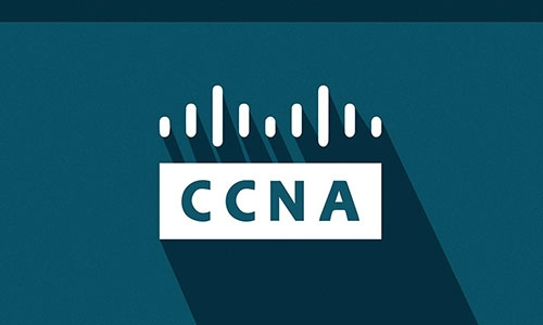 CCNA 2: Routing and Switching Essentials