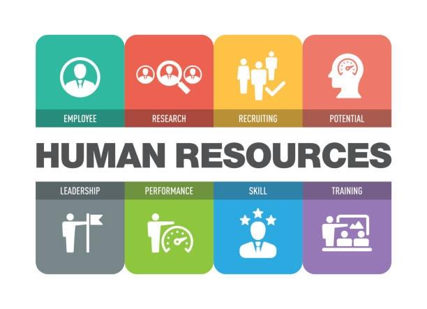 Обучение по HR Management